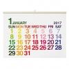 【エトランジェ・ディ・コスタリカ】A2カレンダー 壁掛け <2017年1月から2017年12月対応>